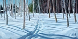 Ski Path Winter Birches